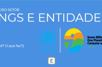 TERCEIRO SETOR – ONGS E ENTIDADES.