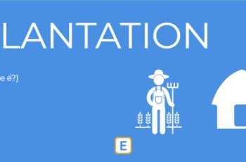 PLANTATION – O QUE É?